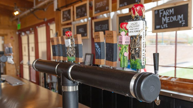 The Tasting Room, Elevating The Cider Experience with Angry Orchard's Ryan