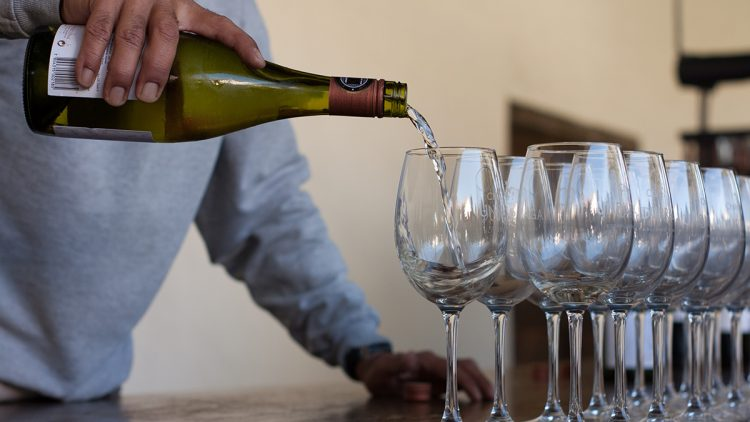 Wine being poured into a row of glasses